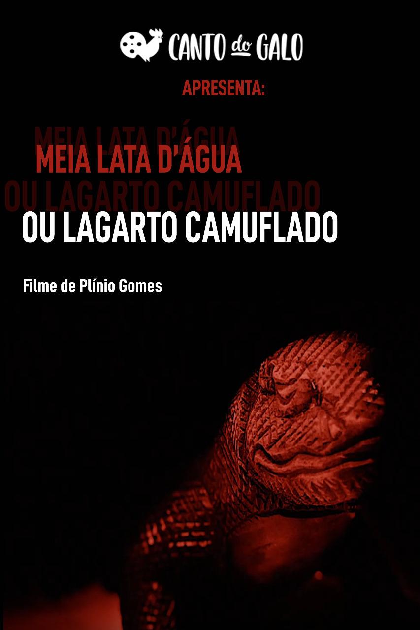 Still_MEIA LATA D'ÁGUA OU LAGARTO CAMUFLADO